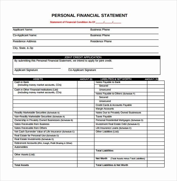 50 Beautiful Personal Financial Statement Template Pdf In 2020