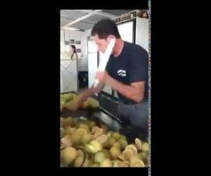 Le vrai Fruit Ninja [video] - http://www.2tout2rien.fr/le-vrai-fruit-ninja-video/