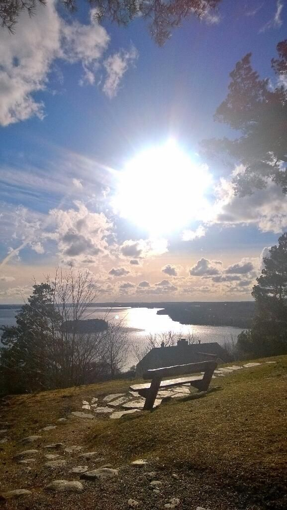 In Tampere you can find a ridge called Pyynikki. It offers you here the perfect possibility to dream - on this bench.