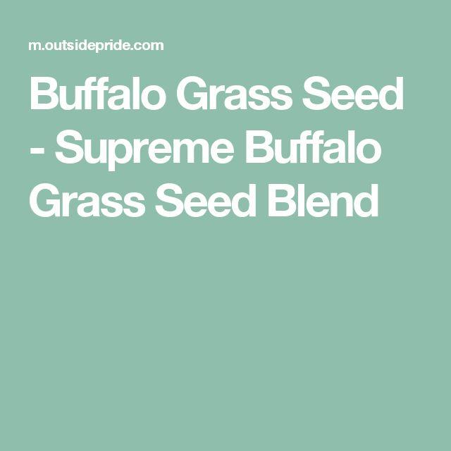 Buffalo Grass Seed - Supreme Buffalo Grass Seed Blend