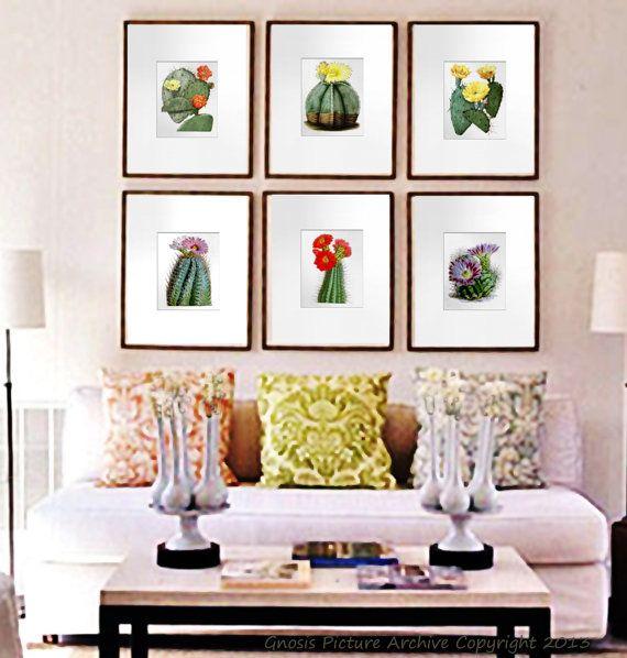 11 best images about cactus cacti flowers antique botanical prints on pinterest cactus print. Black Bedroom Furniture Sets. Home Design Ideas