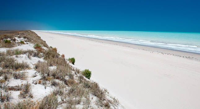80 Mile Beach, along the coast of North- West WA between Broome and port Hedland