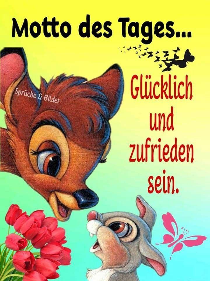Pin Von Jolanka Bordi Auf Your Pinterest Likes Cute Guten