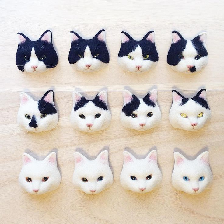 Cute Needle felted project wool animals cats(Via @mosscat25)