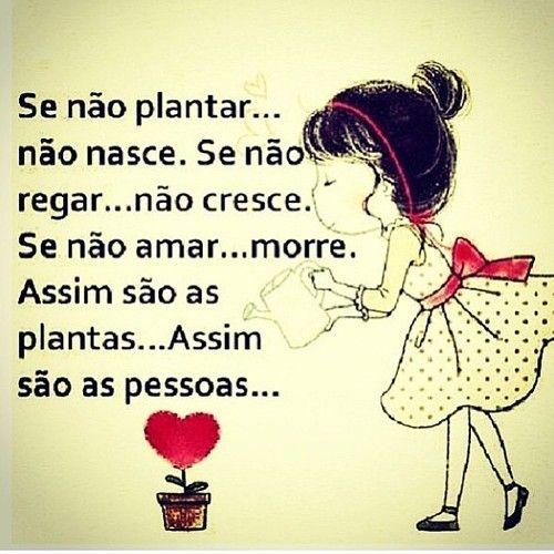 ''Se não #plantar... não #nasce. Se não #regar... não #cresce. Se não #amar... #morre. Assim são as #plantas... Assim são as #pessoas.'' #Frases