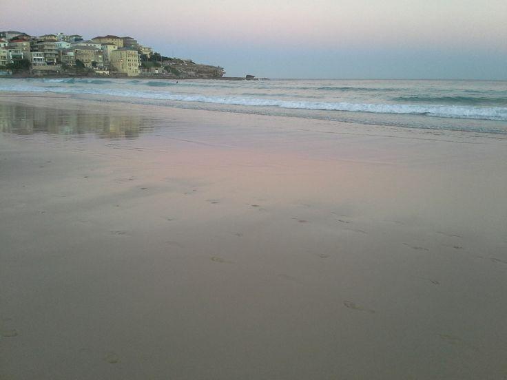 Evening on Bondi Beach