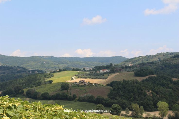 Как же хочется оказаться в этом крохотном домике, так уютно расположившемся на вершине холма.    #Умбрия #Италия