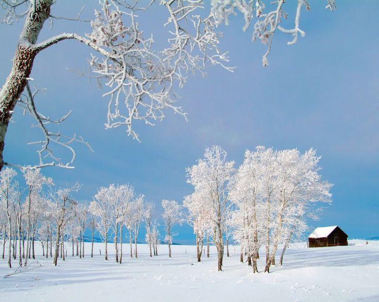 Winter Photography http://rikes.lr-partner.com/