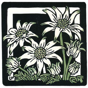 15x15 Flannel Flowers
