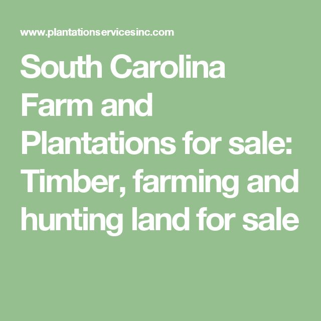 South Carolina Farm and Plantations for sale: Timber, farming and hunting land for sale