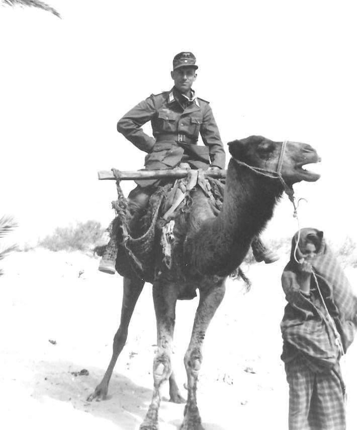 German soldier and camel. North Africa.