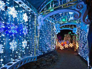 Edmonton Christmas Lights - a great set of photos celebrating the Christmas lights in Edmonton!