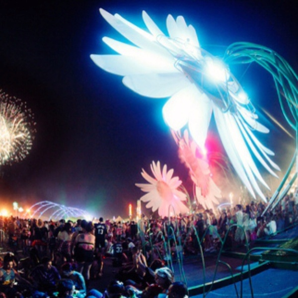 Electric Daisy Carnival, come on 2013 <3