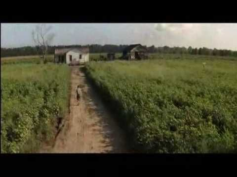 I am Forrest- Alan Silvestri