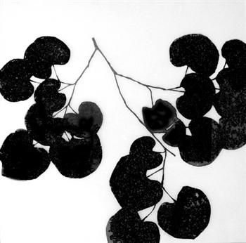 ellsworth kelly                                                                                                                                                                                 More