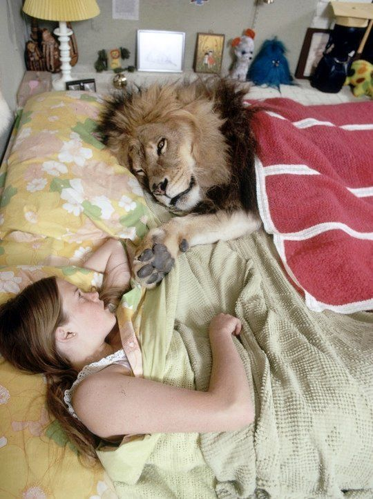 14-year-old Melanie Griffith at home with her pet lion, Neil, 1971