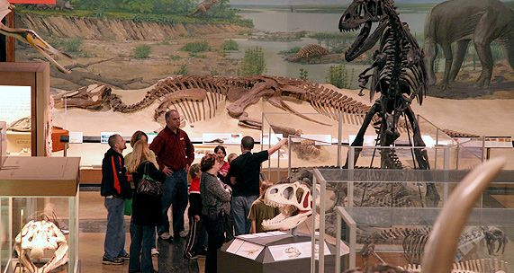 Natural History Museum is full of surprises and dinosaur bones too!! Donations accepted and appreciated.
