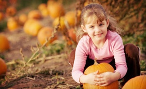 Groupon - $7 for a One Straw-Maze Admission and One Pumpkin at Eggleston Garden Center ($15 Value) in Norfolk. Groupon deal price: $7.00: Farm, Idea, Fall, Pumpkins, Family Photo, Pumpkin Patches, Kid