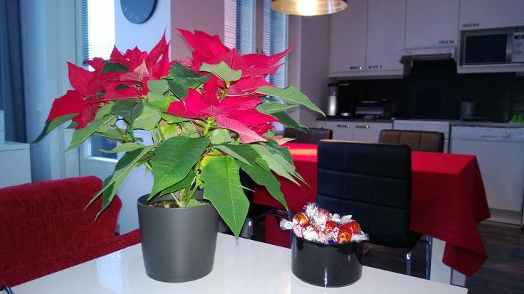 Joulua valmistellen...