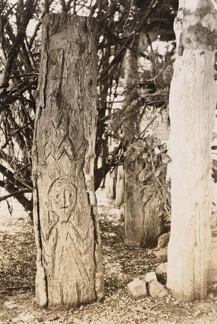 Carved trees--Gamilaroi Country--Album 05: Bora Ground at Banaway, near Mogil Mogil, N.S.W., ca. 1930s-1941 / photographed by R.L. Black [i.e. probably Russell Black]    For more information on this image http://acms.sl.nsw.gov.au/item/itemDetailPaged.aspx?itemID=874328    Search our collections at http://www.sl.nsw.gov.au/