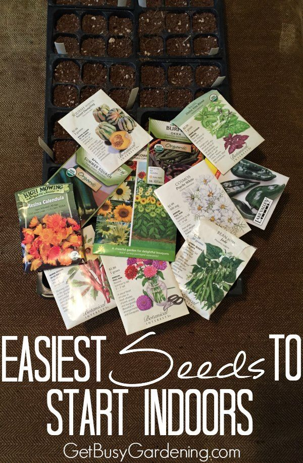 If you're new to starting garden seeds indoors, it's best to try first with…