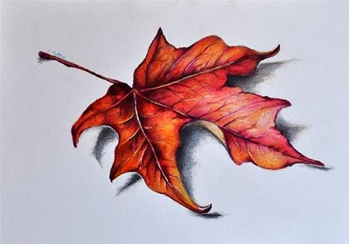 "Daily Paintworks - ""Red Maple Leaf"" - Original Fine Art for Sale - © Stefan Peters"