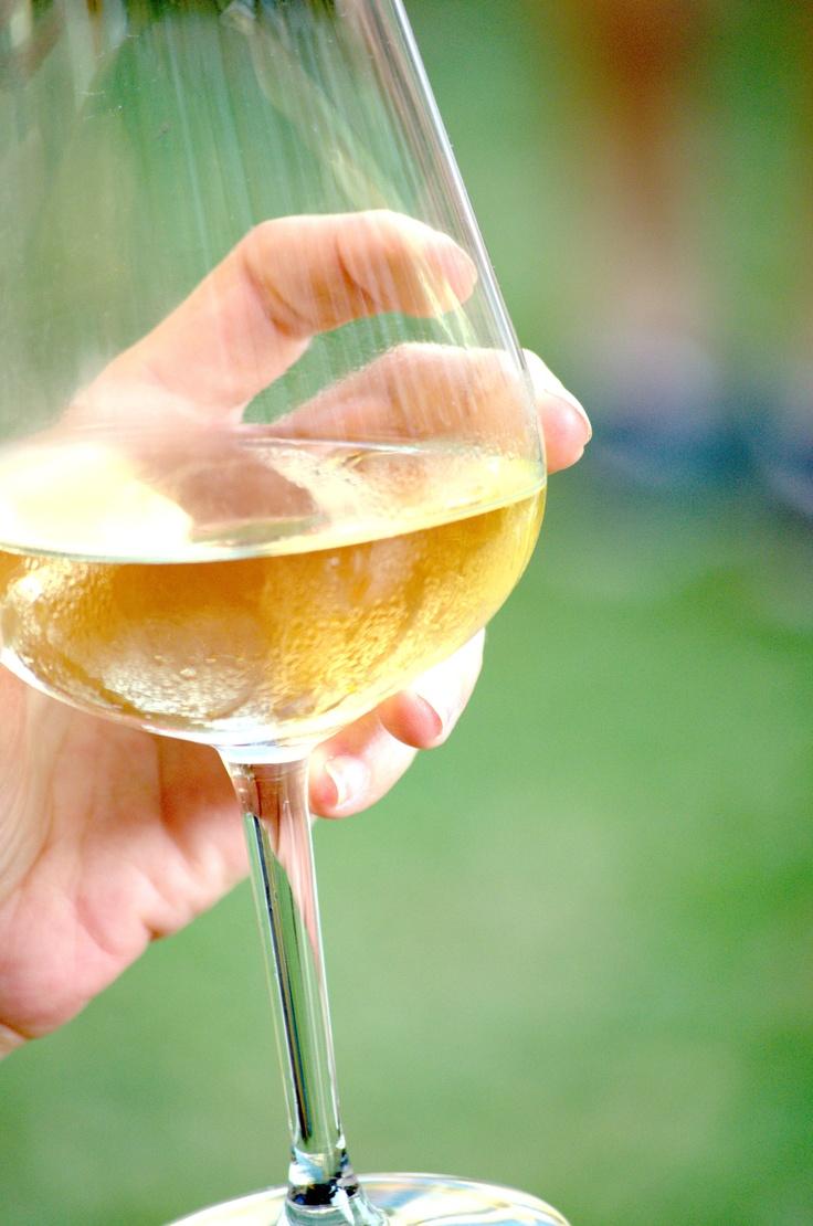 wine (mano mia)