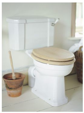 storing your plunger toilets other and flower pots. Black Bedroom Furniture Sets. Home Design Ideas