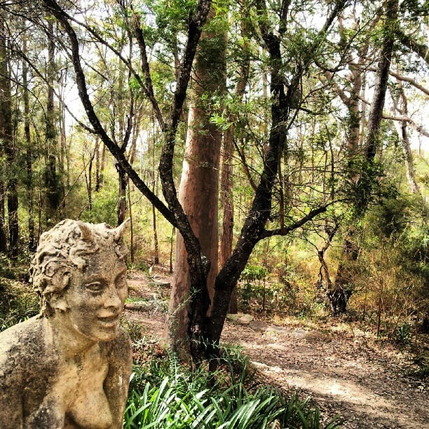 Pathway to the pool at Norman Lindsay Gallery and museum, Blue Mountains - @visitnsw-