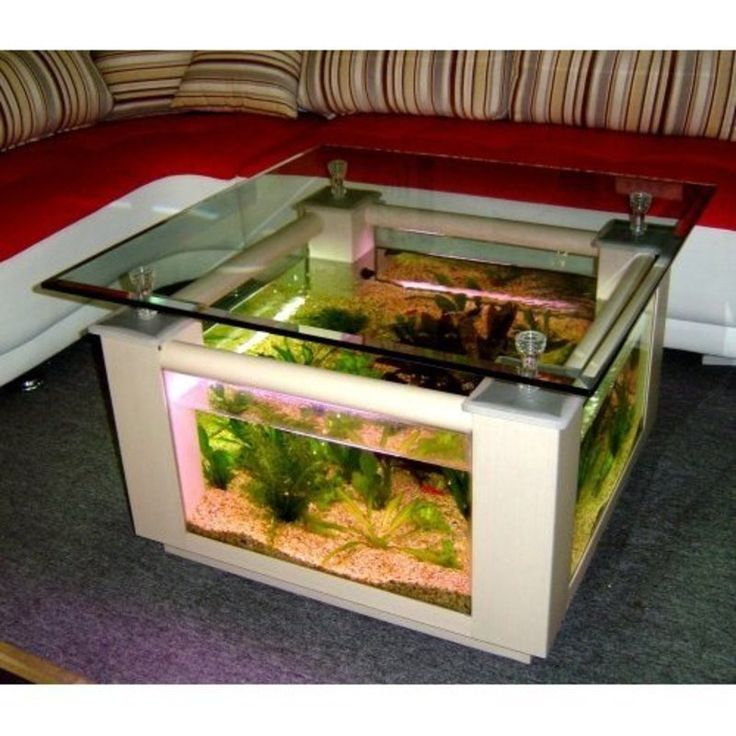 Best 25 Table aquarium ideas on Pinterest Terrariums dragon
