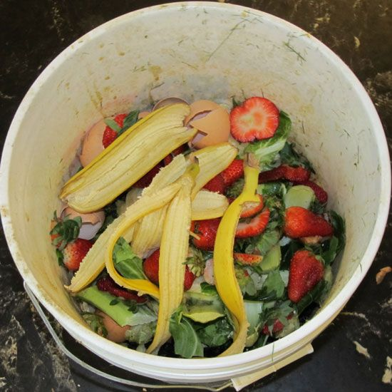 Learn how to compost at home, indoors through winter, using this mesophilic composting system.data-pin-do=