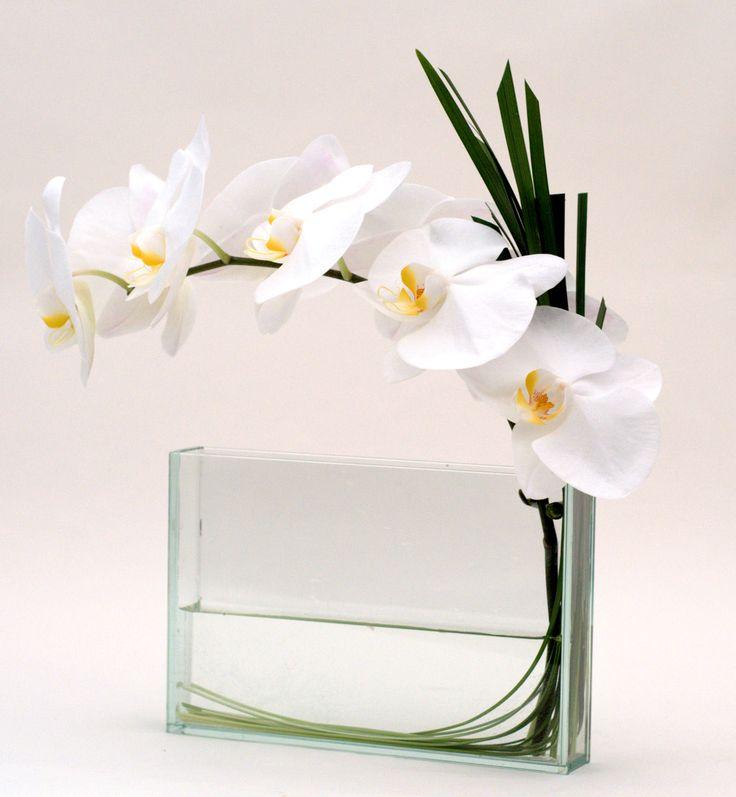 Single stem white orchid- gabrielawakeham.com