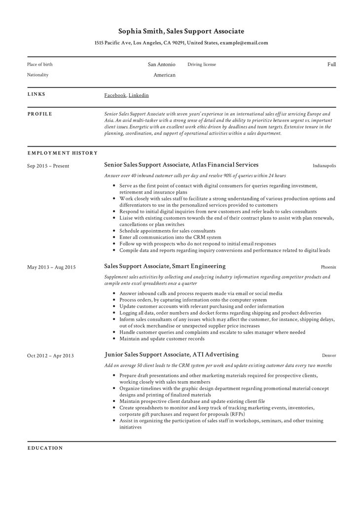 Professional Sales Support Associate Resume, template