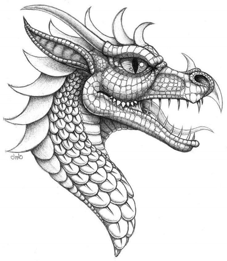 Drachen Vorlage Zum Zeichnen