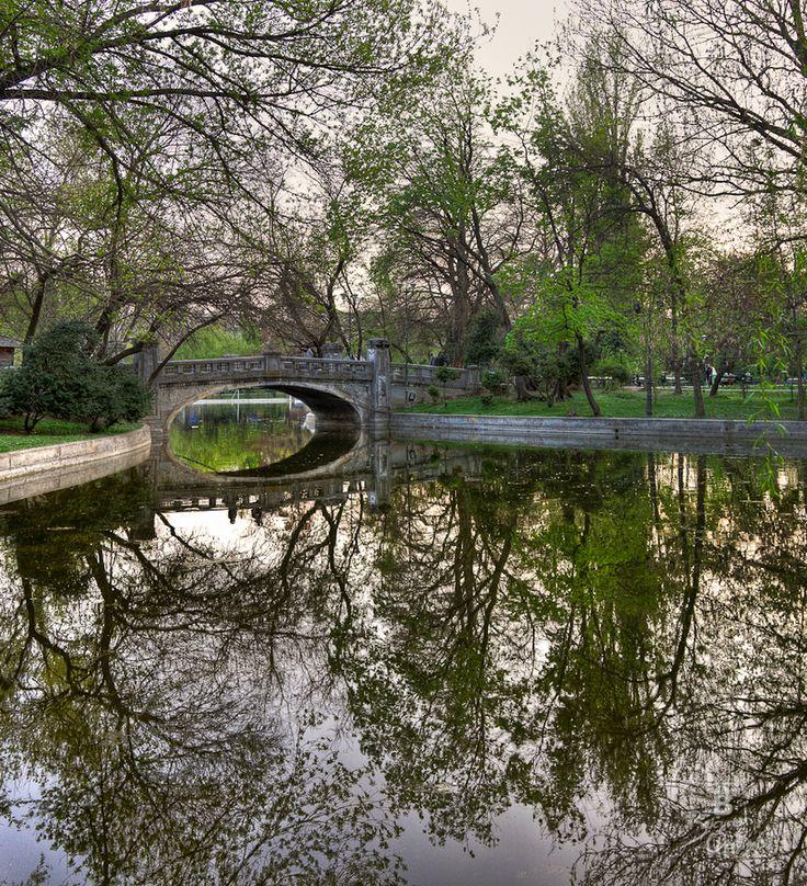 Cismigiu, Bucharest Romania