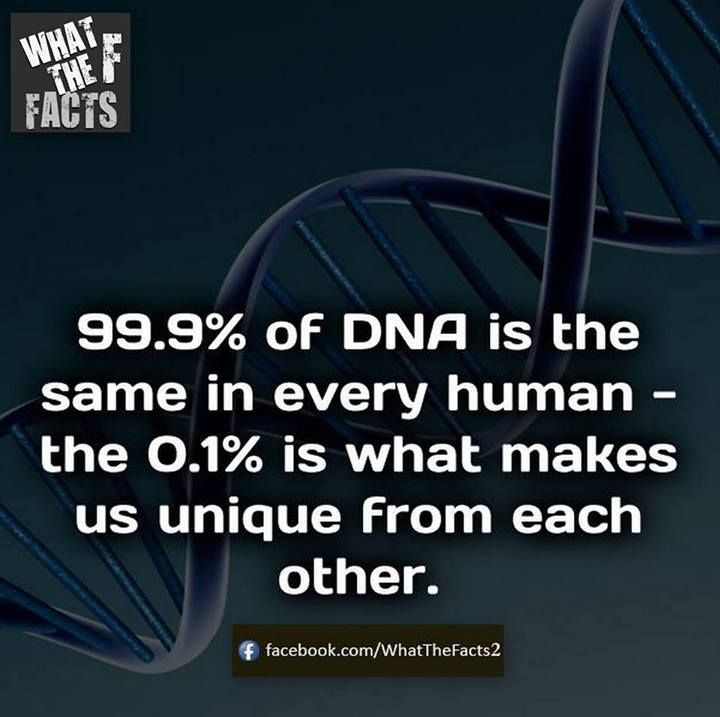 DNA..that's because .. There is One Father that created Life in all it's forms..and it all returns to the dust..except those that learn the Way Home.. and Father resurrects...