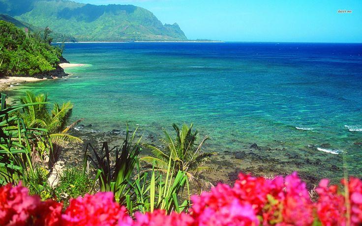 Beach Wallpaper Hawaii Flowers And On Pinterest