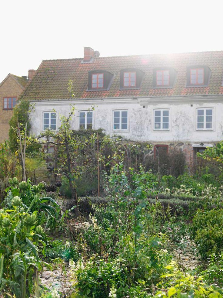 Hemma hos Mandelmanns Trädgårdar, foto Peter Carlsson