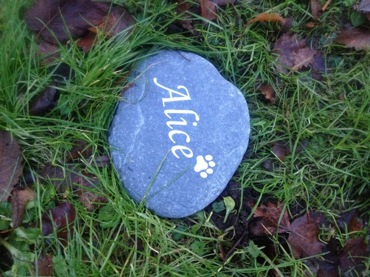 Gone from my life but always in my heart. Miss you, Alice. X