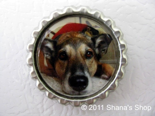 Love this idea for a gift! A custom photo bottle cap magnet made from your photo @ Shana's Shop! What a great gift idea!
