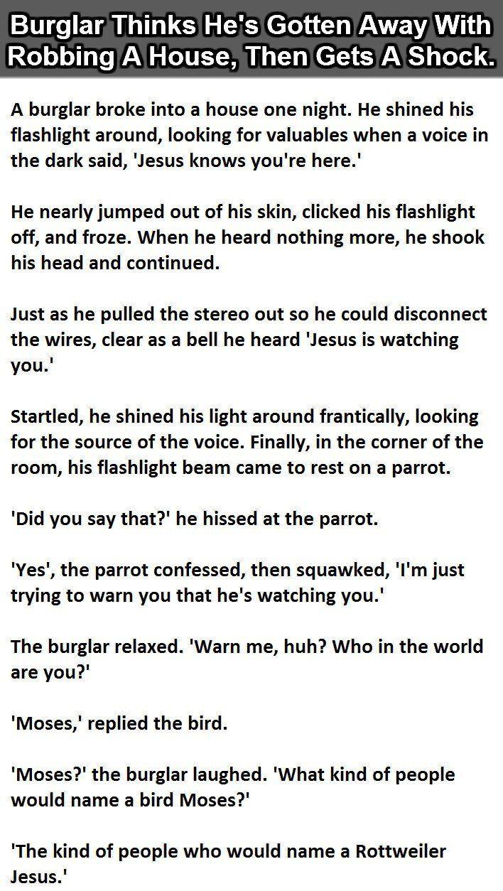 .burglar in house..
