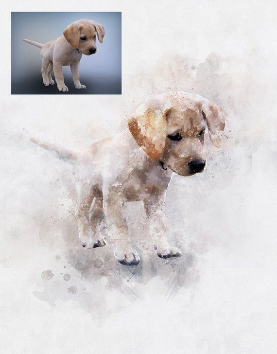 Custom Dog Painting Watercolor Dog Portrait Memorial Pet Drawing