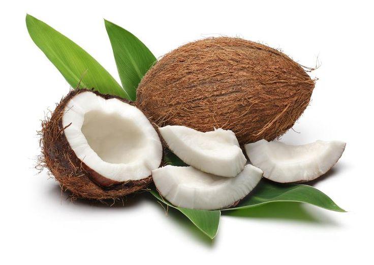 Kokospalme Pflanze Die Kokospalme oder Kokosnusspalme ist ein tropischer Baum aus der Familie der Palmengewächse, an dem die Kokosnuss wächst. Cocos nucifera ist die einzige Art der Gattung. Es gibt verschiedene Sorten.