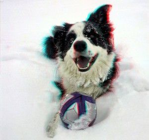 http://3dprinteray.com/my-dog-man/