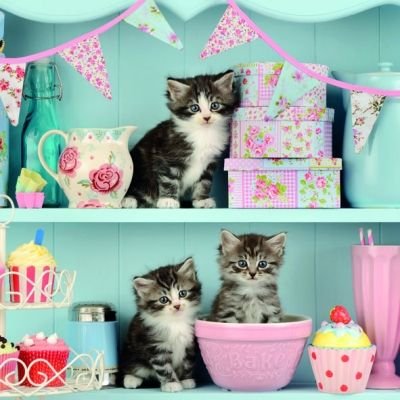 Kitty Cats Picture