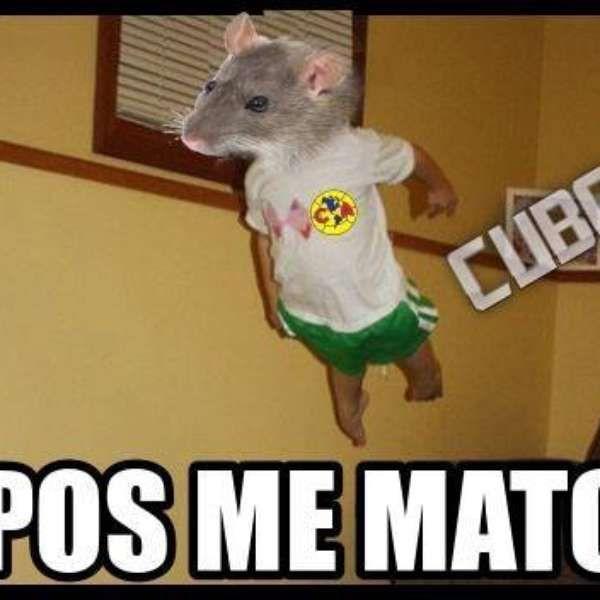 Disfruta de los mejores memes del América vs Chivas