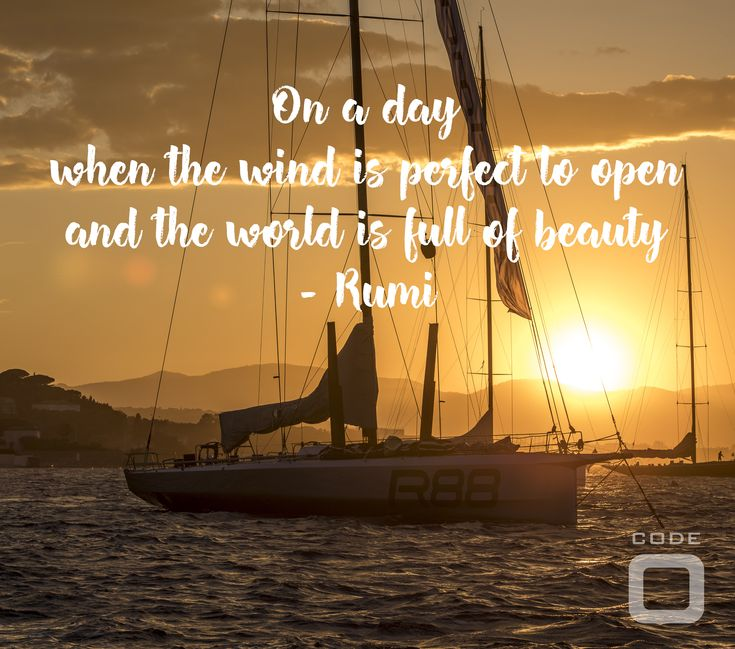 On a day when the wind is perfect to open and the world is full of beauty - Rumi