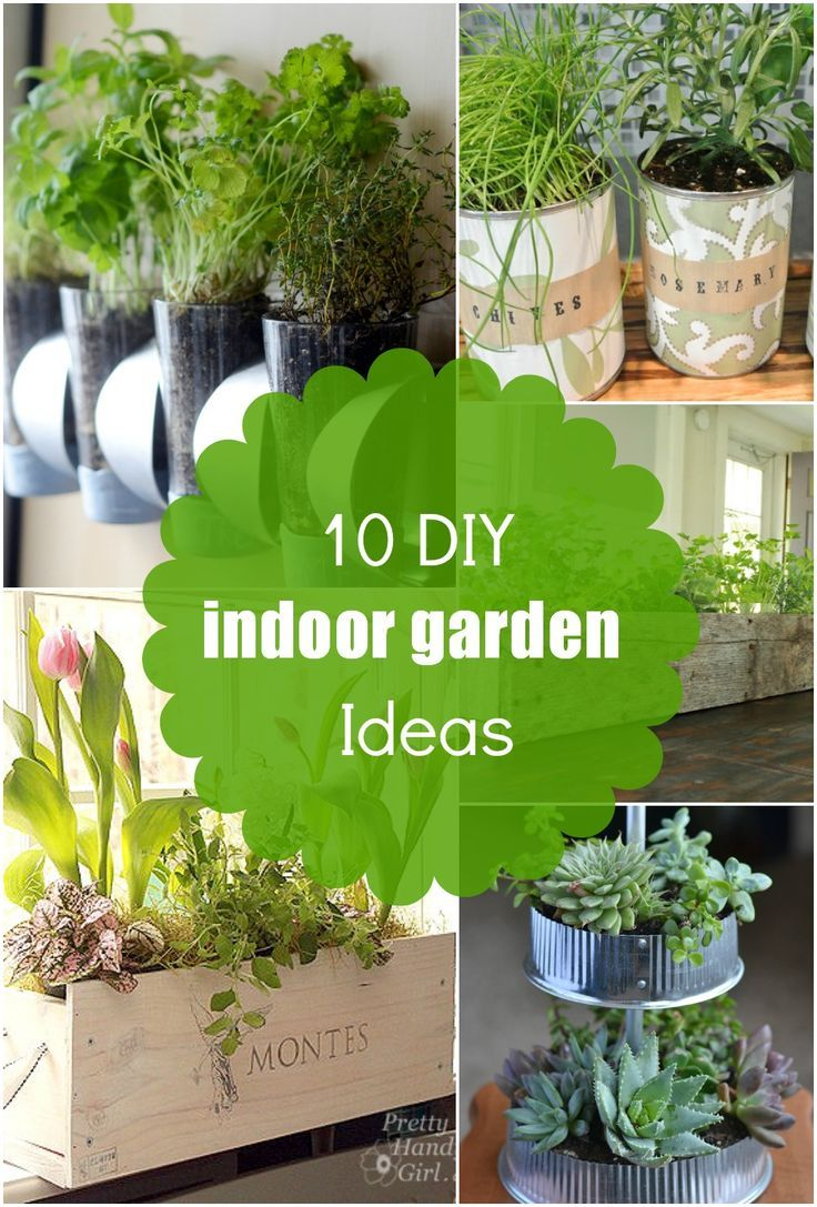 10 DIY Indoor Garden Ideas, Herb Planters, Succulents And More!