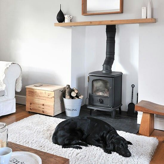 Log burner + doggy = perfect