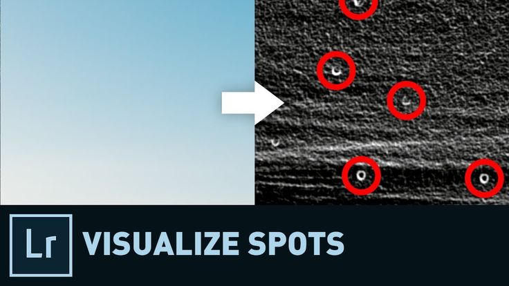 How to Spot the Spots in Lightroom | Quick Tip